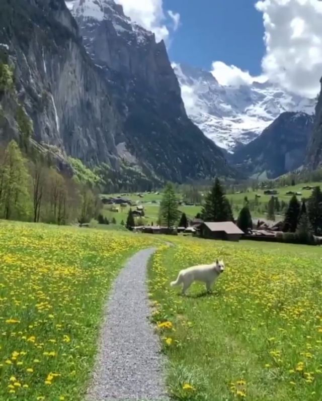Lauterbrunnen - Funny Videos - funvizeo.com - lauterbrunnen,beautiful nature,mountain