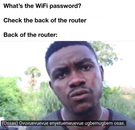 The wifi password is on the back of the router meme