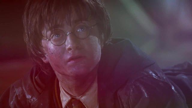 Harry in wonderland X meme
