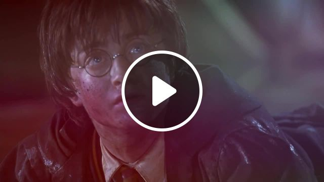 Harry In Wonderland X Meme - Video & GIFs | smerz have fun meme, harry potter and the chamber of secrets meme, гарри поттер и тайная комната meme, cool world meme
